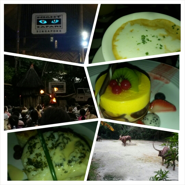 Singapore Safari Night @ 16 July 2014