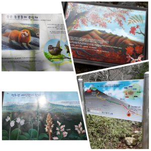 Signages about the flora and fauna and animals than can be found..